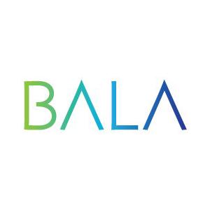 Bala Consulting Engineers, USA
